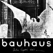 Bela Session , Bauhaus