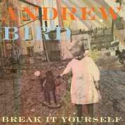Break It Yourself , Andrew Bird