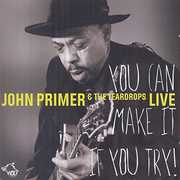 You Can Make It If You Try , John Primer