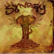 Synrgy