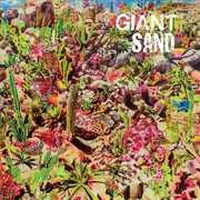 Returns To Valley Of Rain , Giant Sand