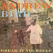 Break It Yourself , Andrew Bird