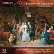 Secular Cantatas 3 , J.S. Bach