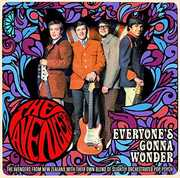 Everyone's Gonna Wonder: Complete Singles Plus [Import] , The Avengers