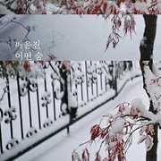 Mini Album Vol. 1 [Import] , Bae Yun Jin