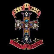 Appetite for Destruction , Guns N' Roses