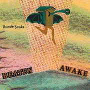 Thunder$troke , Beaten Awake