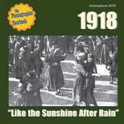 Like The Sunshine After Rain