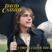 I Think I Love You , David Cassidy