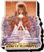Labyrinth- One Sheet Funky Chunky Magnet