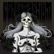 Assassins - Black Meddle Pt. I , Nachtmystium