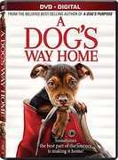 A Dog's Way Home , Bryce Dallas Howard
