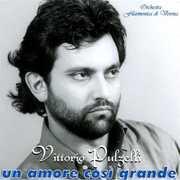 Un Amore Cosi Grande [Import] , Vittorio Pulzelli