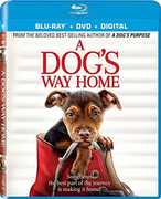 A Dog's Way Home , Bryce Dallas Howard