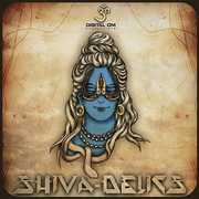 Shivadelics: Compiled By Shivadelic /  Various [Import] , Various Artists