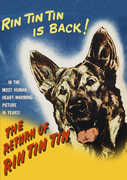 The Return of Rin Tin Tin , Rin Tin Tin III