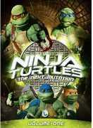 Ninja Turtles: The Next Mutation: Volume 1 , Gabe Khouth