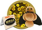 Mrsa: Methicillin-Resistant Staphylococcus Aureus (Giant Microbes)