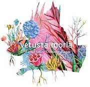 Mismo Sitio Distinto Lugar [Import] , Vetusta Morla