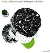 Transcendent Function [Import] , Daniel Levin