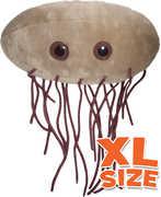 XL E. Coli: Escherichia Coli (Giant Microbes)