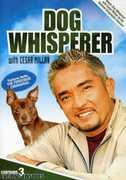 Dog Whisperer with Cesar Millan 1 , Paul Dini