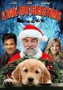 A Dog for Christmas , Dean Cain