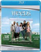 Weeds: Season 1 , Lochlyn Munro