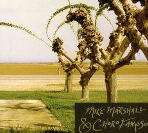 Mike Marshall & Choro Famoso