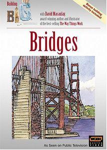 Building Big: Bridges