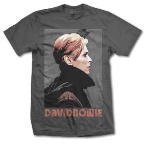 David Bowie Low Portrait (Mens /  Unisex Adult T-Shirt) Charcoal, SS [Small] Front Print Only