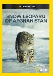 Snow Leopard of Afghanistan