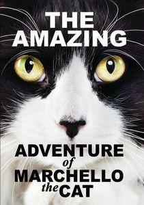 Amazying Adventure of Marchello the Cat