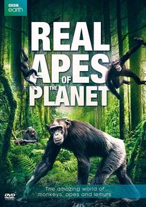 Real Apes of the Planet