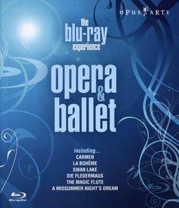 Experience Opera & Ballet Highlights