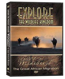 Explore the Wildlife Kingdom: Wildebeest the Great African Migration