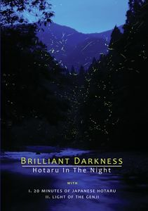 Brilliant Darkness