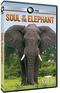Nature: Soul of the Elephant