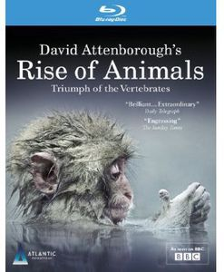 David Attenborough's Rise of Animals: Triumph of T [Import]