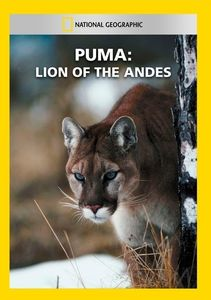 Puma: Lion of the Andes