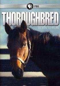 Thoroughbred: Born to Run