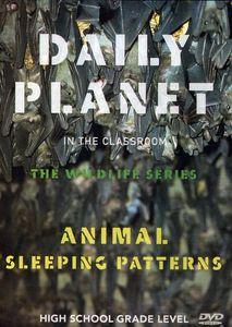 Animal Sleeping Patterns