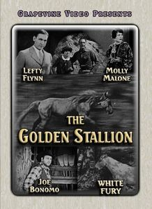 The Golden Stallion