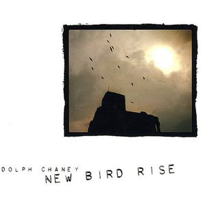 New Bird Rise