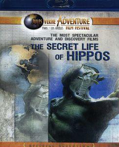 Secret Life of Hippos
