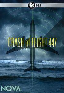 Nova: Crash of Flight 447
