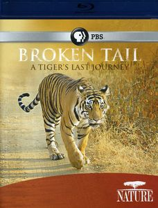 Nature: Broken Tail: A Tiger's Last Journey