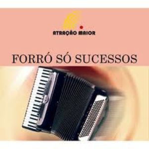 Forro /  Various [Import]