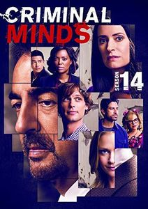 Criminal Minds: Season 14 , Matthew Gray Gubler