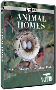Nature: Animal Homes